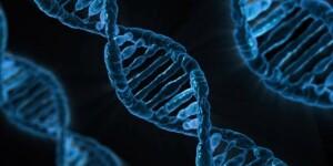 Наука и околонаучное